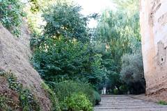 Pujant cap a l'Alhambra