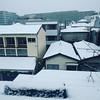 初雪。初積雪。都心は積もってない。だと? のサムネイル