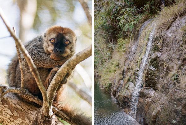 RYALE_Madagascar_Blog2_044