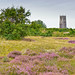 Winterton on Sea Church and Heather by norfolklandscapephotography