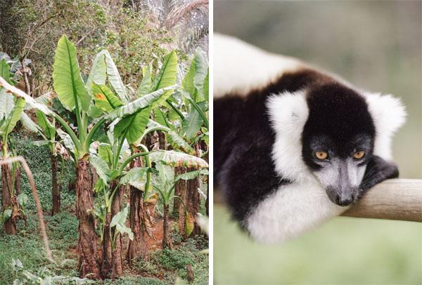 RYALE_Madagascar_Blog2_006