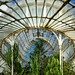 Palm House Pano, Interior by Michael Foley Photography
