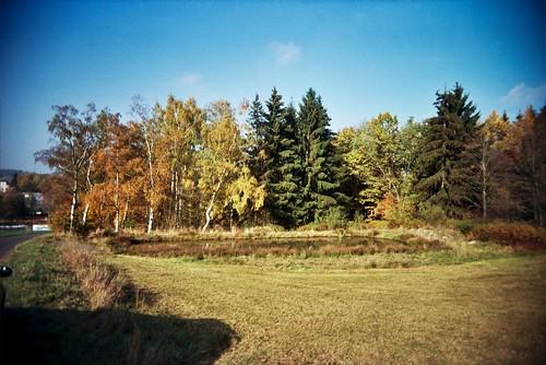 Pond - Autumn - SuperHeadz Wide and Slim