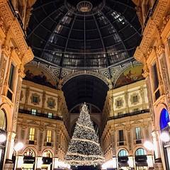 Christmas lights in Galleria Vittorio Emanuele II, one of the world's oldest shopping malls #iphoneography #iphoneonly #instamood #instagram #instagood #instaddict #instagramhub #bestoftheday #picoftheday #igers #igersitalia #italy #beitalian #italianeogr