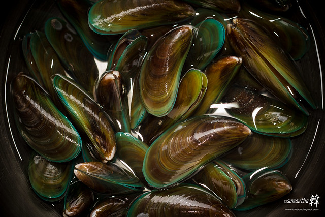 Mussels-3384