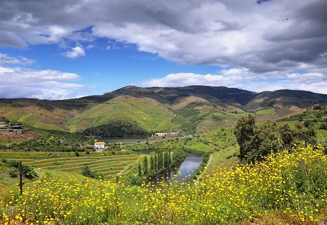 The Quinta do Tedo estate where Port Wine is produced