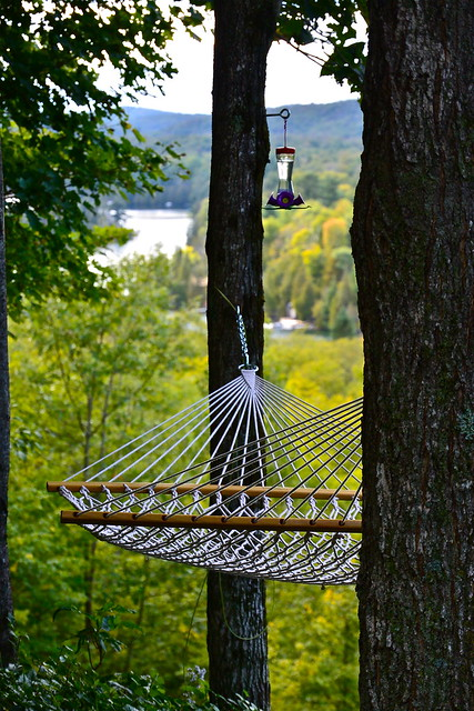 hammock and hummingbird feeder