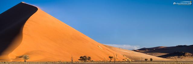 Dune 40