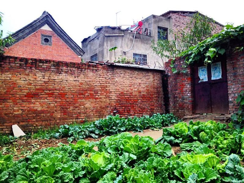 河南 / Hanan - 溝張村