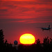 Fly to the Sunset Paradise by TOTORORO.RORO