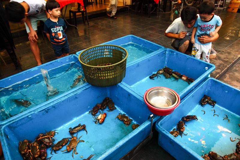 Choosing-Crabs