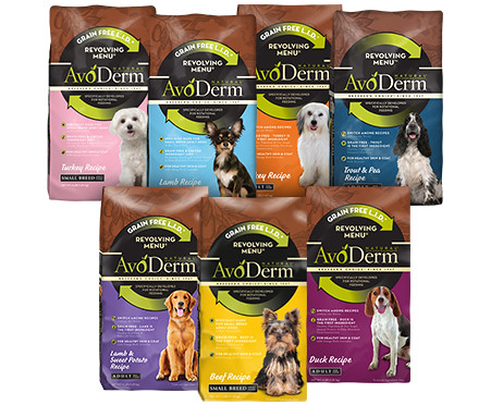 #AvoDermNatural Lapdog Creations 6 Week Trial #sponsored