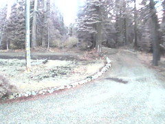 00606E91F246(Driveway Cam 3) motion alarm at 20151005072307