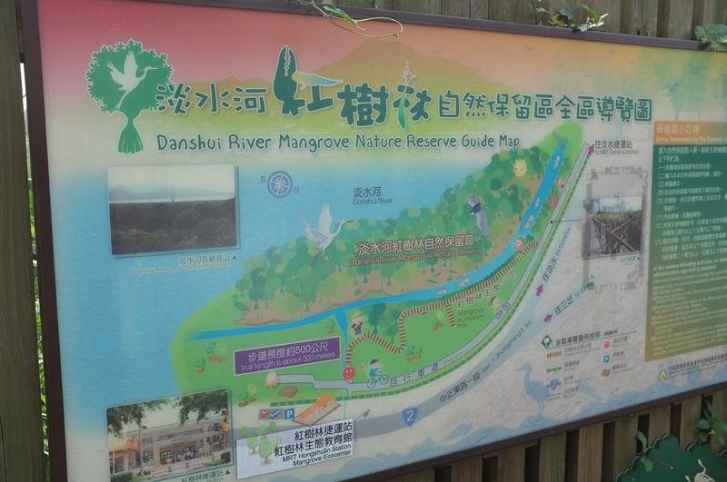 紅樹林自然步道DSCF6053