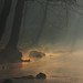 Magic haze by Sappho et amicae