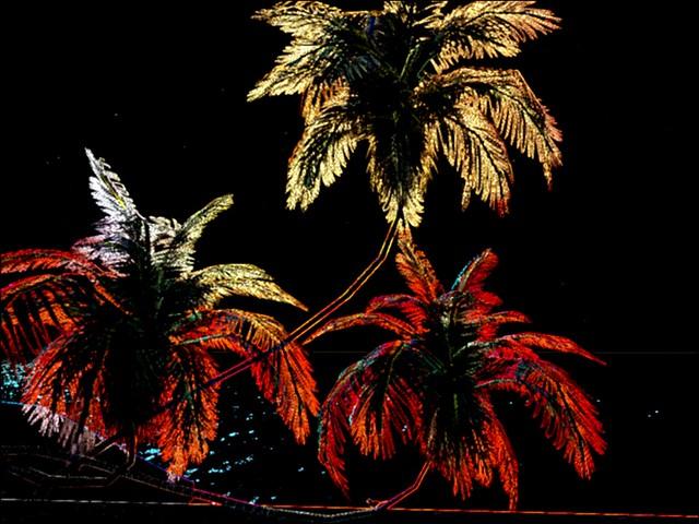 Aquilla III - The Lovelace Institute - The Glowing Edge of Three Palms Sunday