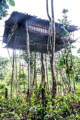 Corowai house