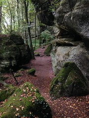 Autumn 2016 Belgium, Luxembourg, France, Germany