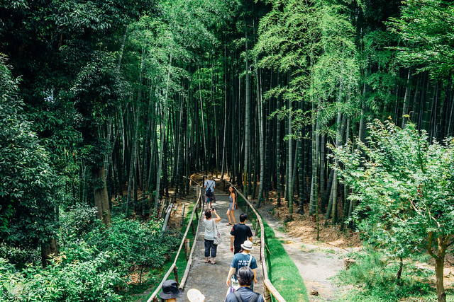 Kyoto_234