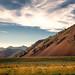evening - Trail Creek Road - Ketchum, ID - 6-30-15  04  -  Explore! by Tucapel