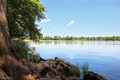 Lady Bird Lake - Austin, Texas