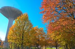 Herbst am Wasserturm - HDR