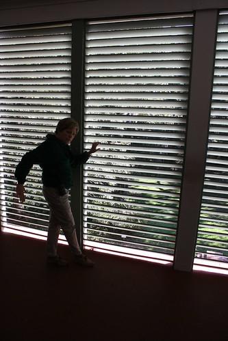 west public silhouette st louisiana plantation shutter oakley francisville 2015 tjean314 johnhanley feliciana allphotoscopy20052015johnhanleyallrightsreservedcontactforpermissiontouse allphotoscopy20052016johnhanleyallrightsreservedcontactforpermissiontouse