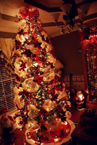 Christmas Tree (November 26 2014)