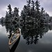 Canoe & pines with fresh snow by Peter Bowers