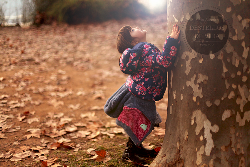 La magia de los árboles y los niños