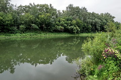 [2014-08-03] Yumatovo & the Dyoma River