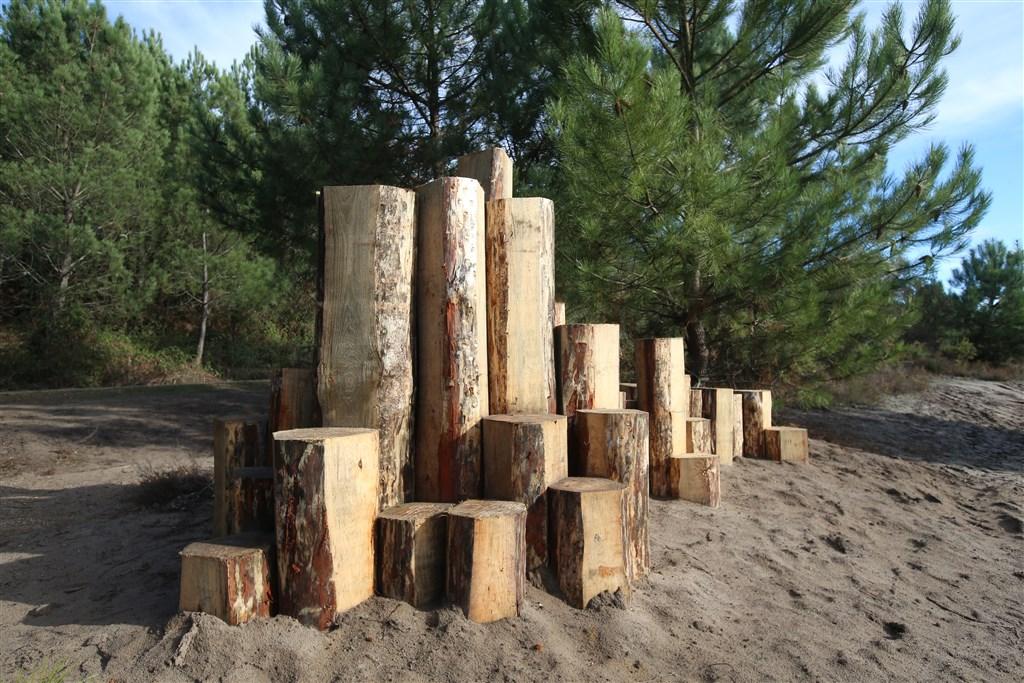 Forêt d'Art Contemporain : Les orgues des Landes à Arjuzanx