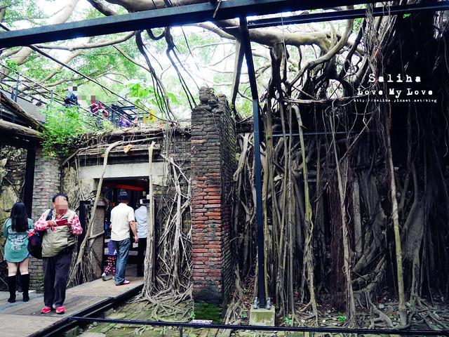台南一日遊景點推薦安平樹屋安平老街 (23)