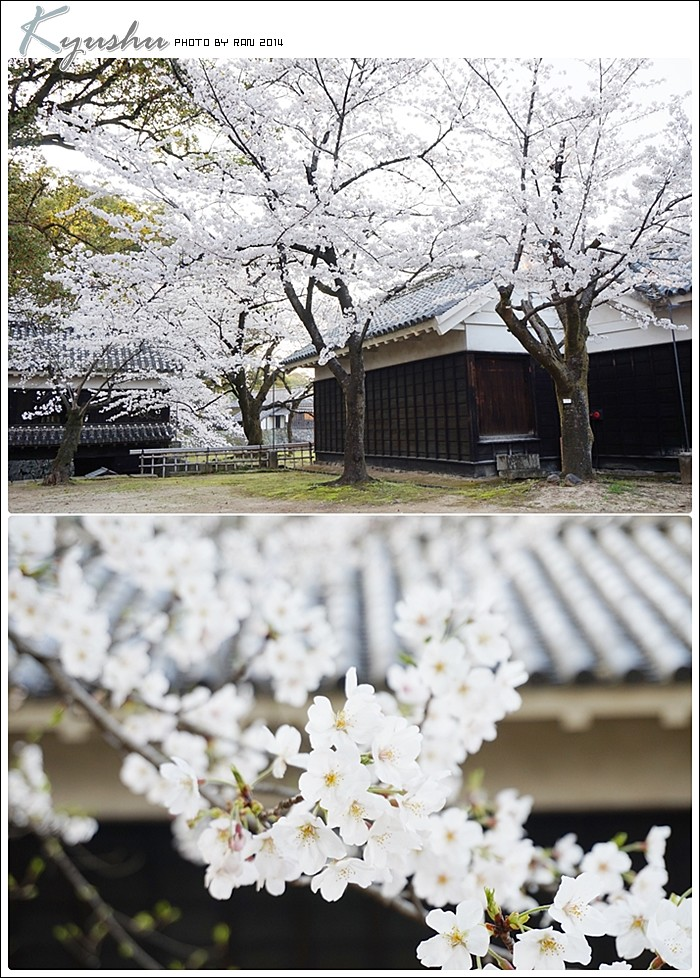 kyushu20140327041