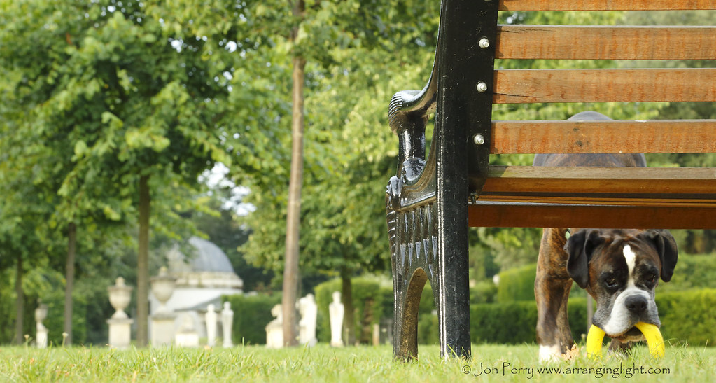 _C0A6109REW A Walk in the Park, Jon Perry - Enlightenshade, 23-8-15 zan