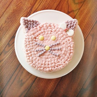 "My sister @emma.vw makes crazy cute animal birthday cakes for her kids and was sweet enough to help me make a kitty cake for JuJu. It's harder than it looks, people!! As I began doing the piping, she said, ""Now the trick to this is patience."" Boy was that"