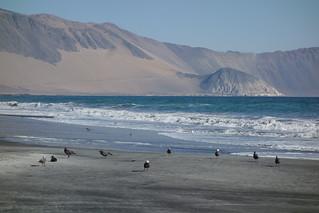 Punta Gruesa, Chile