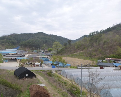 Co-Yeongju-Taebaek-train (10)