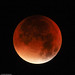 Supermoon eclipse middle by Andy McGeechan