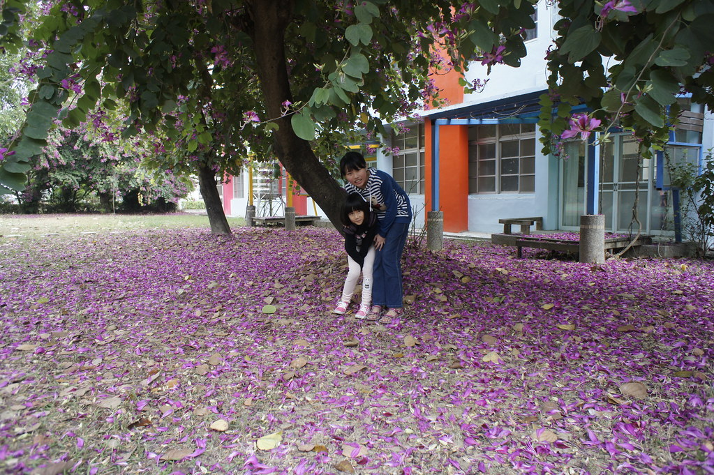 台南市後壁區無米樂故鄉 (20)