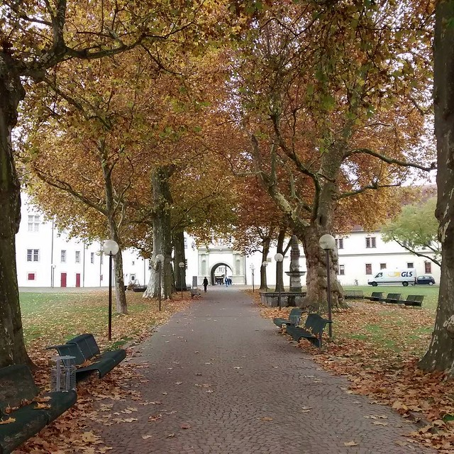 Schlosspark Bad Mergentheim