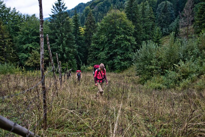 Carpathian Mountains near Babyn