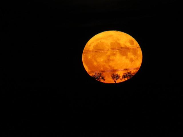 perigee moon (super moon) 14. 11. 2016