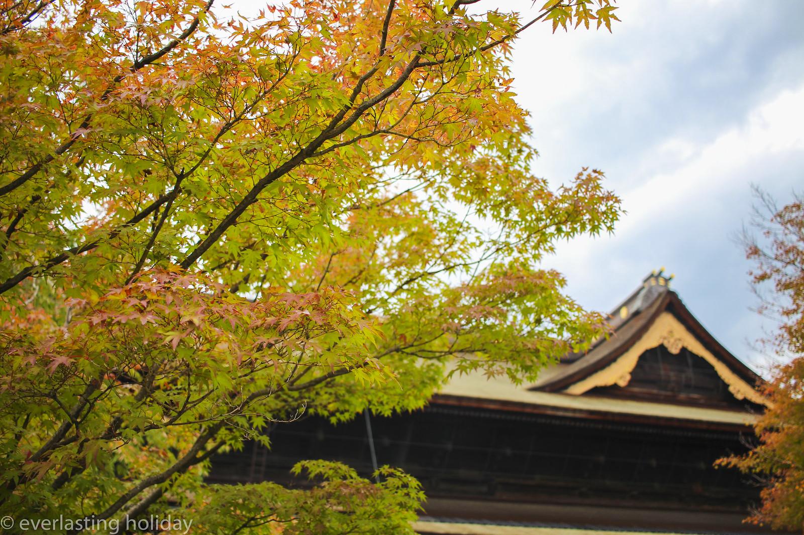 善光寺 Zenkoji Temple-0004