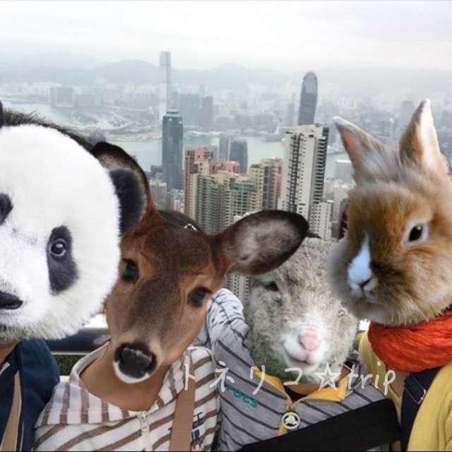 hongkong0101