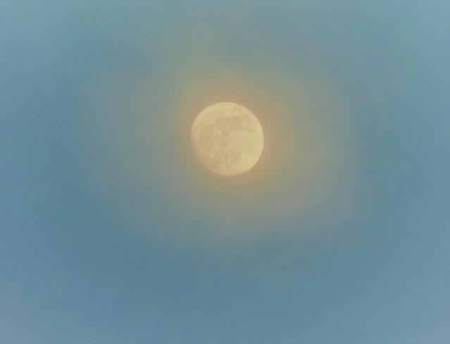 Moon at sunset, Nikon COOLPIX P510