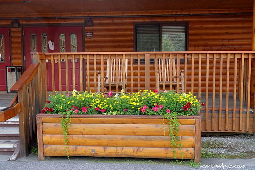 denali_log_planter_web