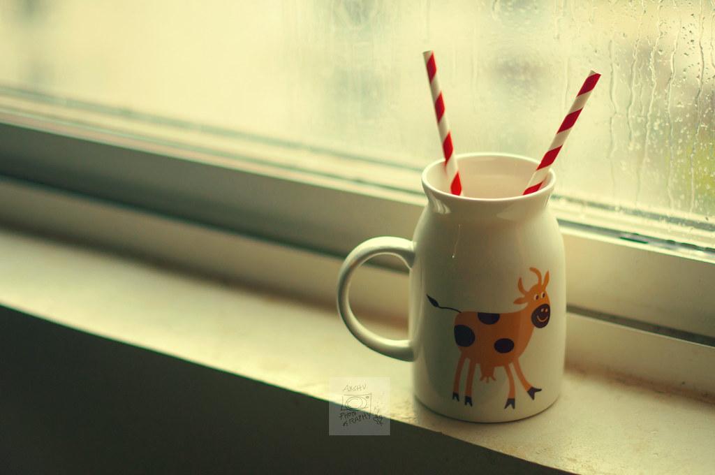 Day 216.365 - Milk Jug