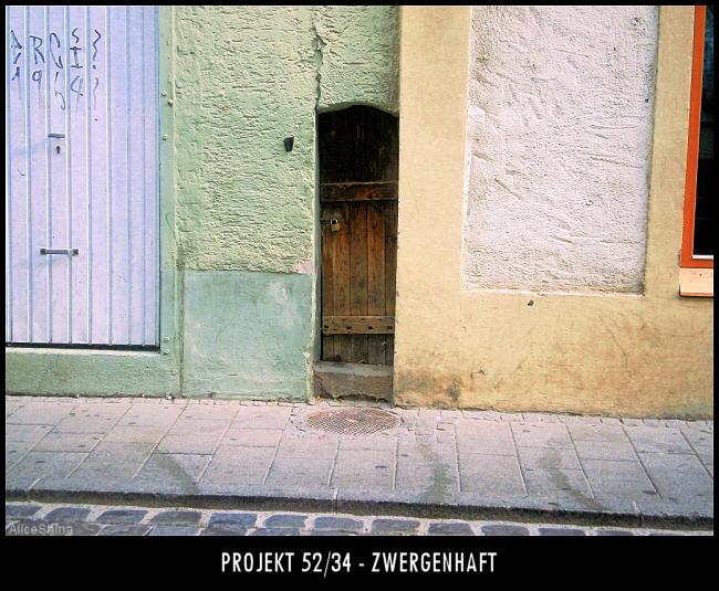 Projekt 52/34 - Zwergenhaft