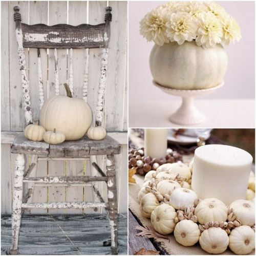 white-pumpkin-neutral-decor